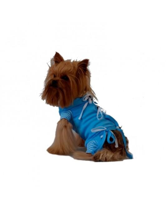 Opatrunek, koszulka pooperacyjna - Zwierzęta małe - Sklep weterynaryjny