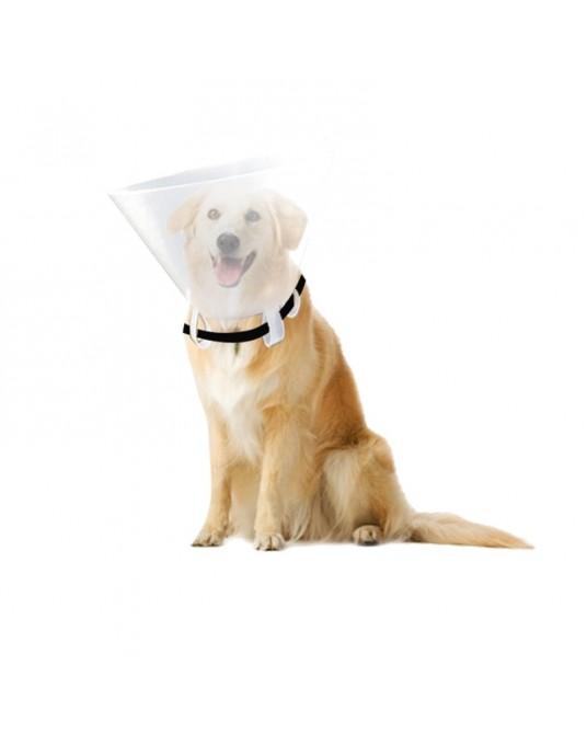 Kołnierz ochronny dla zwierząt - Sklep medyczny / weterynaryjny - Sigmed