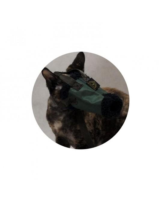 Kaganiec dla kota r. 1 - kot mały, devon rex itp. - Sklep medyczny / weterynaryjny - Sigmed
