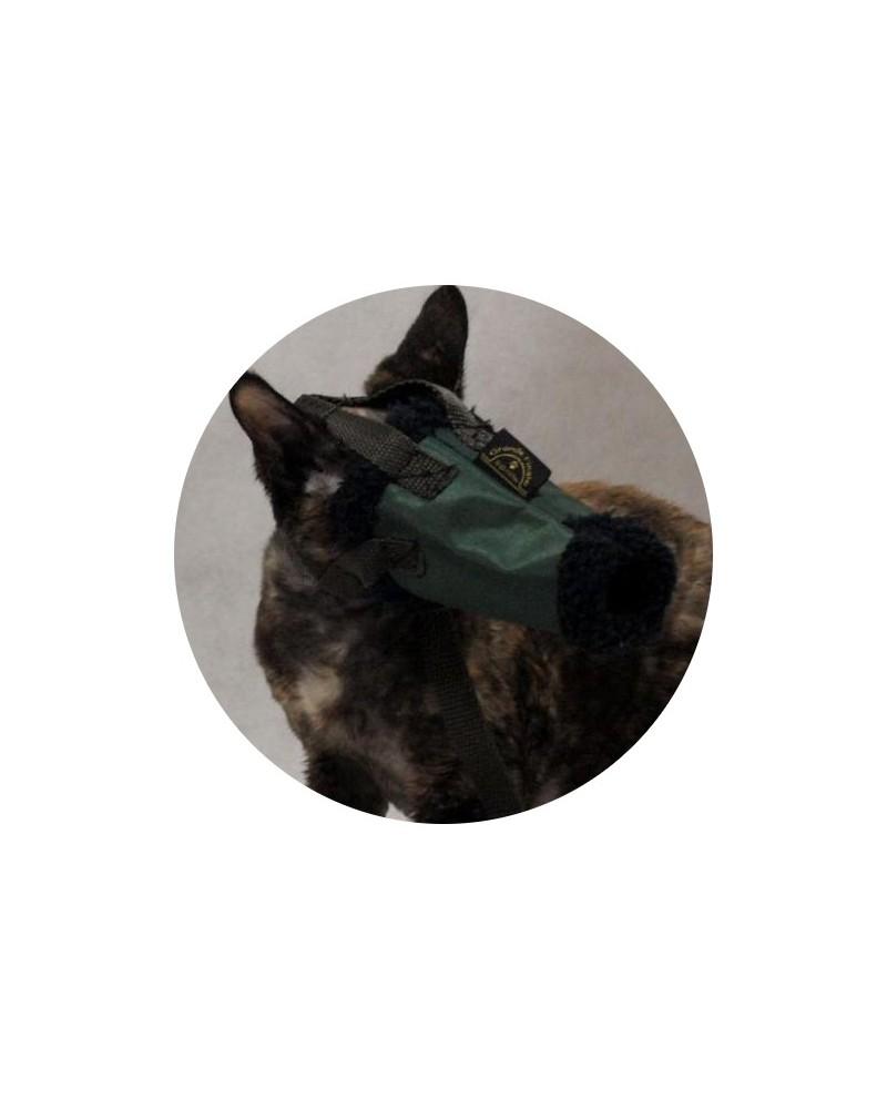 Kaganiec dla kota