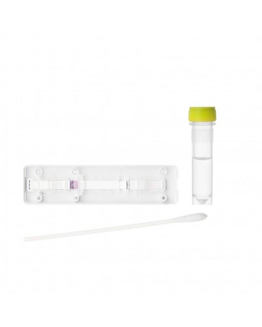 Test diagnostyczny antygenu CDV/CIV Ag