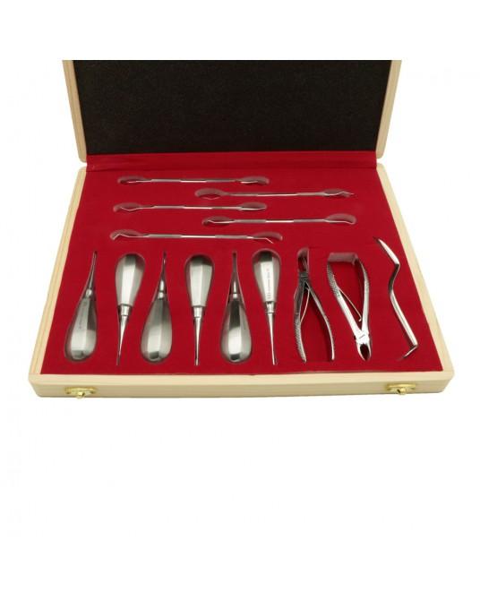Zestaw stomatologiczny dla małych zwierząt, 14 elementów, w pudełku